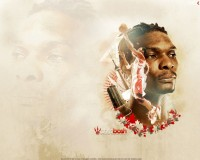 Chris Bosh 1080p Wide Screen Wallpaper