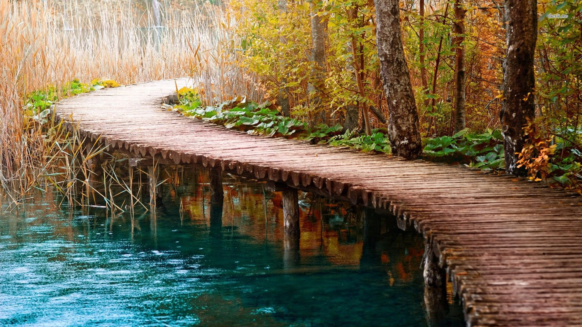 wooden bridge wallpaper - photo #13