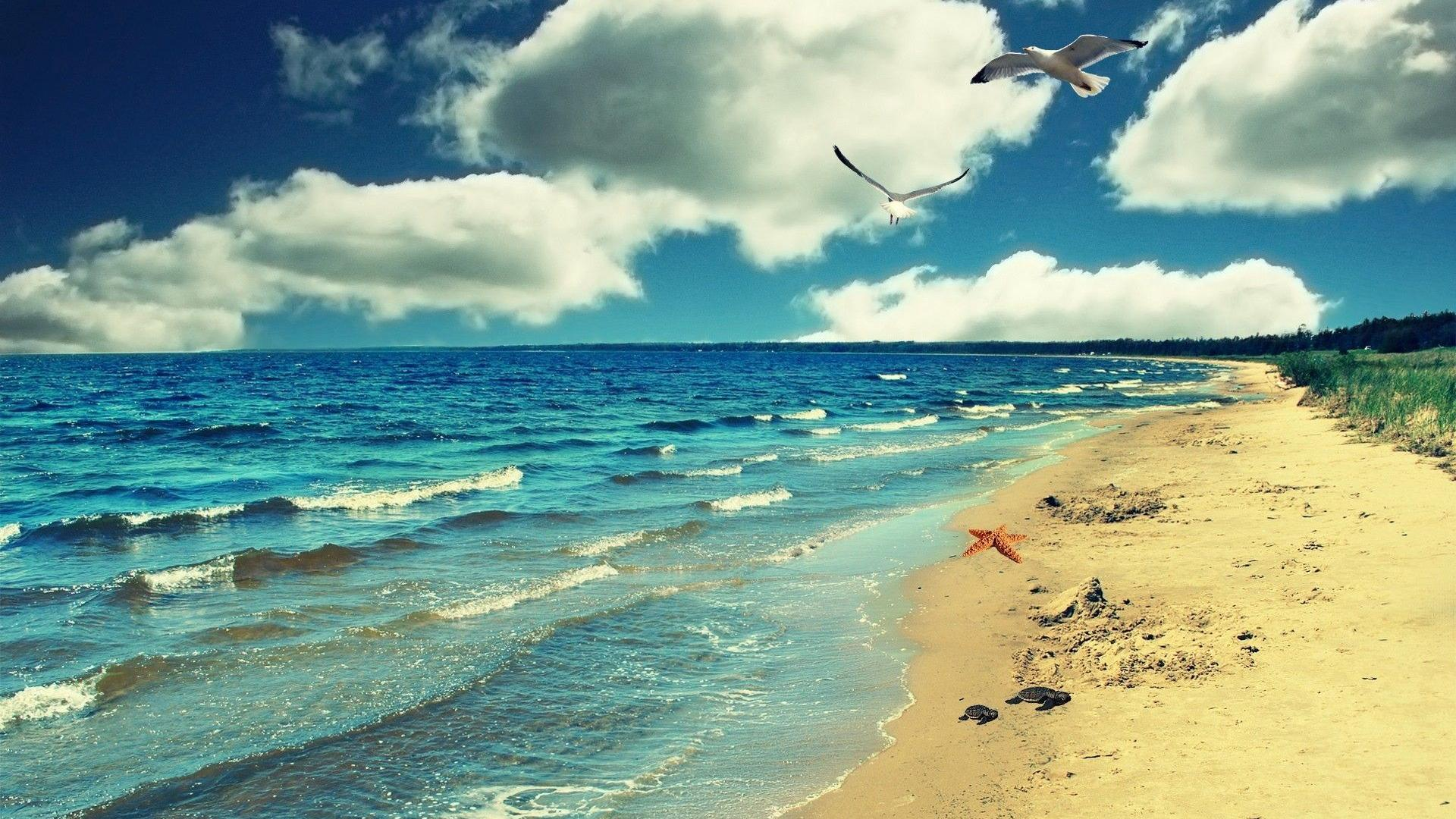 Hd Wallpapers 1080p Ocean: Hd Beach Wallpapers 1080p With 1920×1080 Pixel