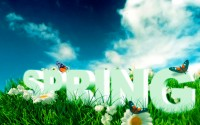 Hd Spring Text Wallpaper