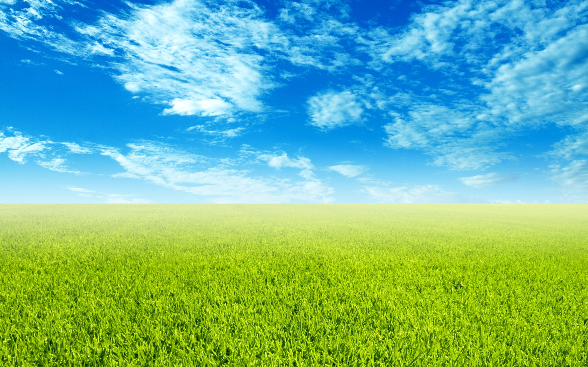 Sky and Grass Wallpaper | Wide Screen Wallpaper 1080p,2K,4K