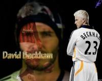 Beckham 312
