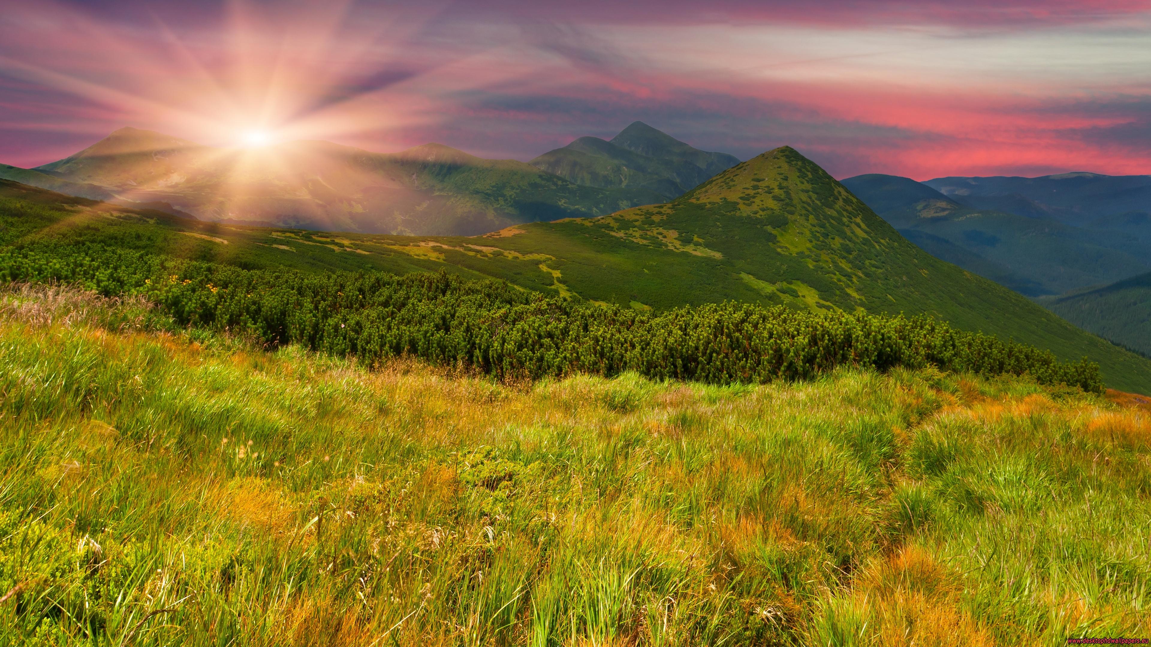 Field & Sunrise 3840x—2160 Wallpaper