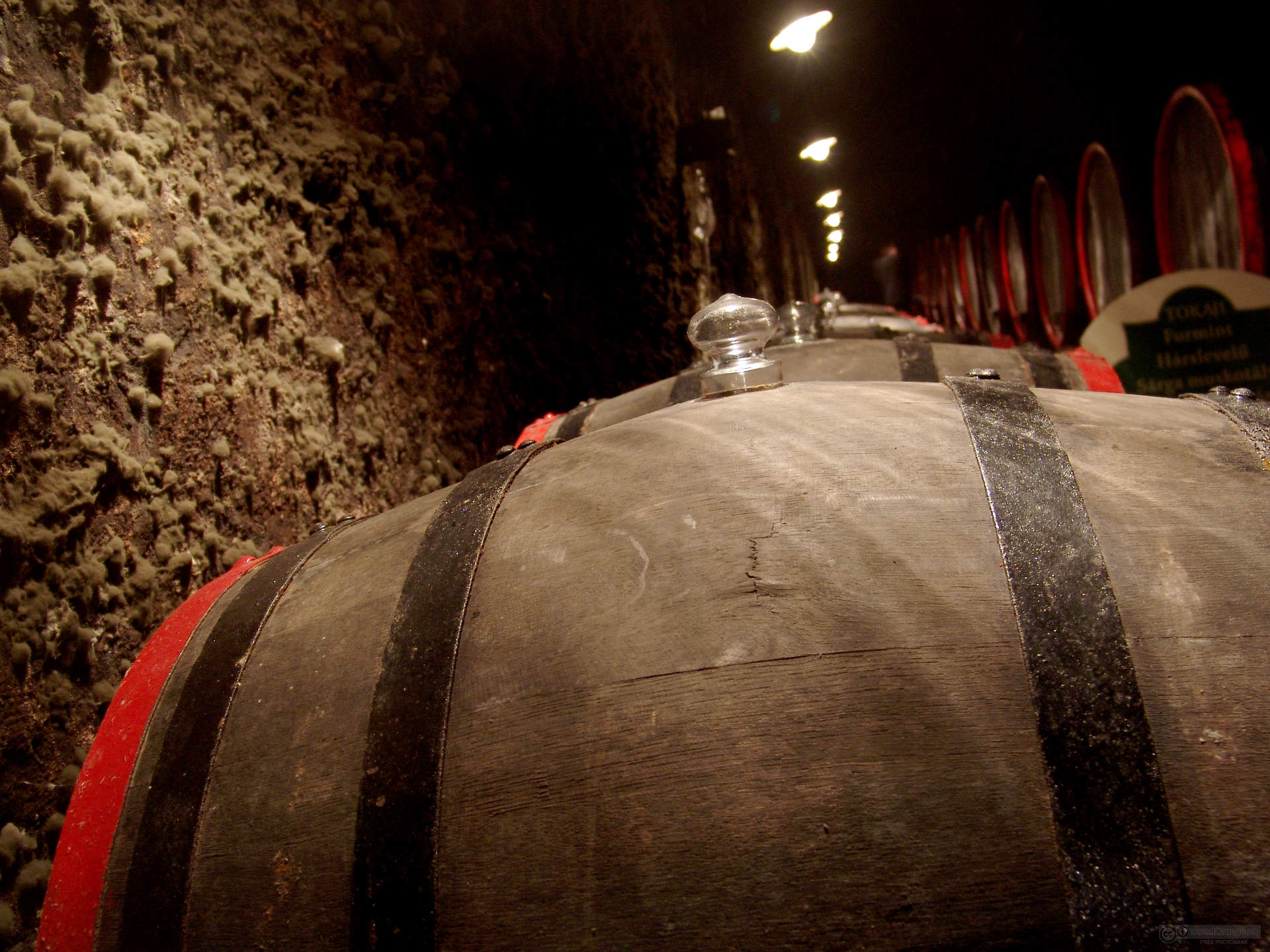 Barrels of Wine in Large Cellar HD Wallpaper