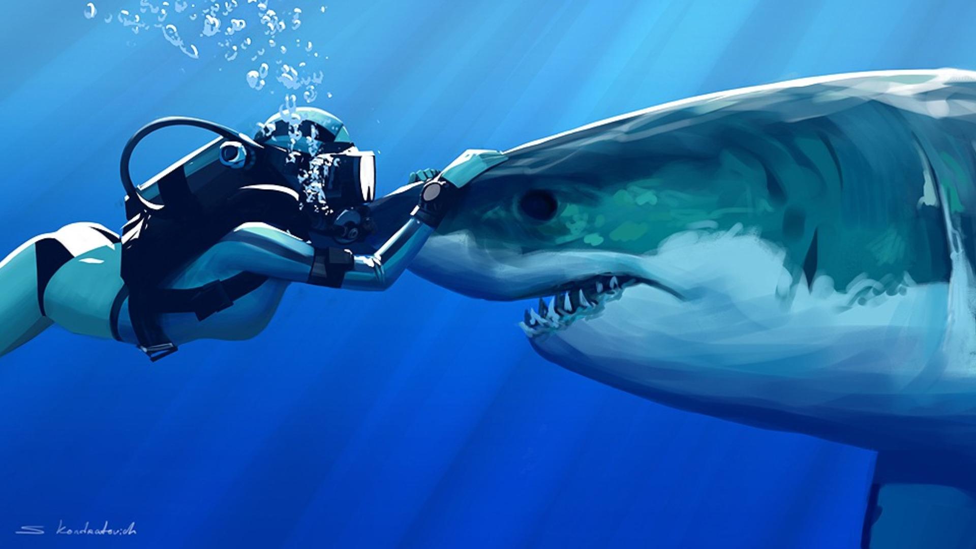 Shark With Diver HD Wallpaper