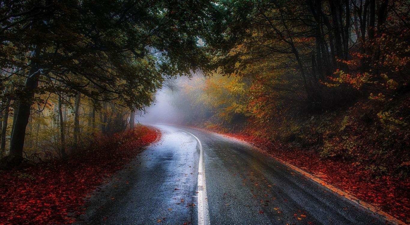 autumn_road_wallpaper-1366x768
