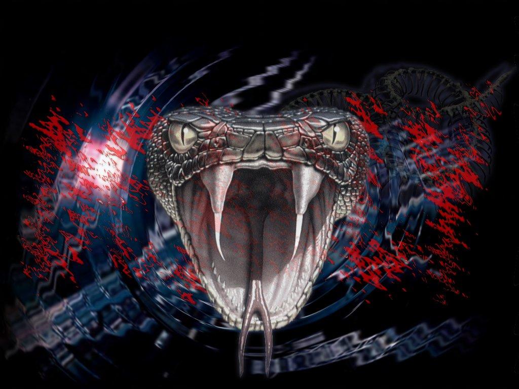 Artistic Snake Wallpapers | Wide Screen Wallpaper 1080p,2K,4K