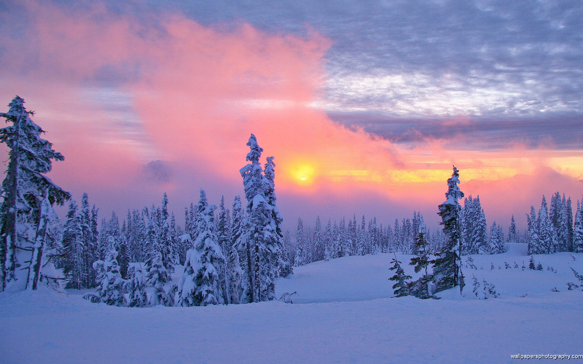 Snow Scenes Sunset HD Wallpaper | Wide Screen Wallpaper 1080p,2K,4K